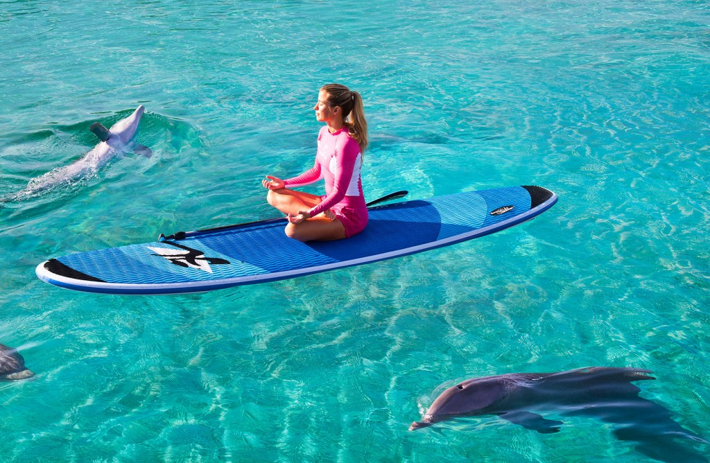 A woman meditates on a paddle board as dolphins swim around her.