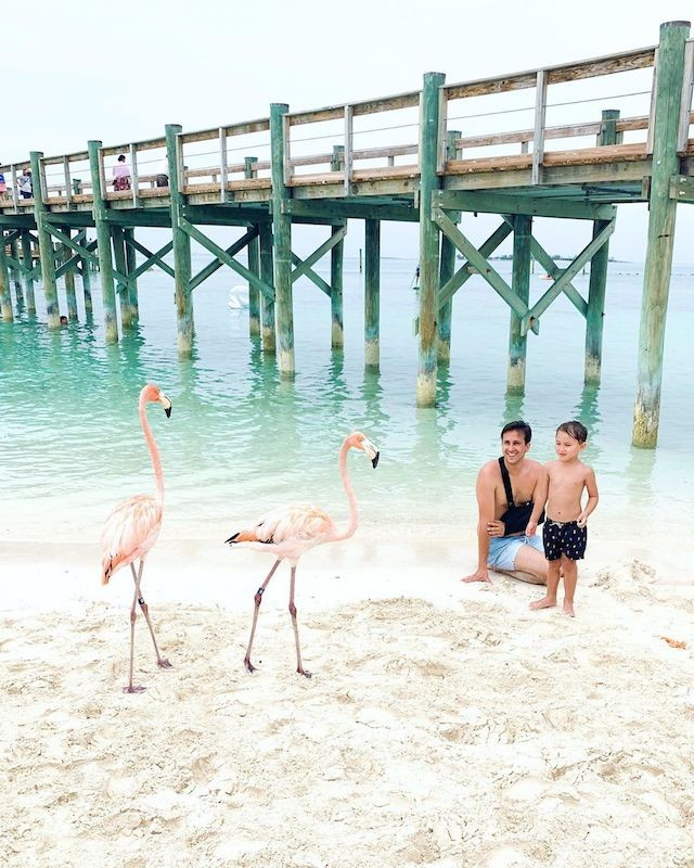 A father and son look at flamingos on a beach in The Bahamas.