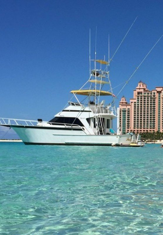 Charter boat on the water in front of resort