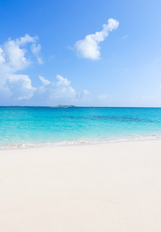 A white sand beach contrasts beautiful turquoise waters.