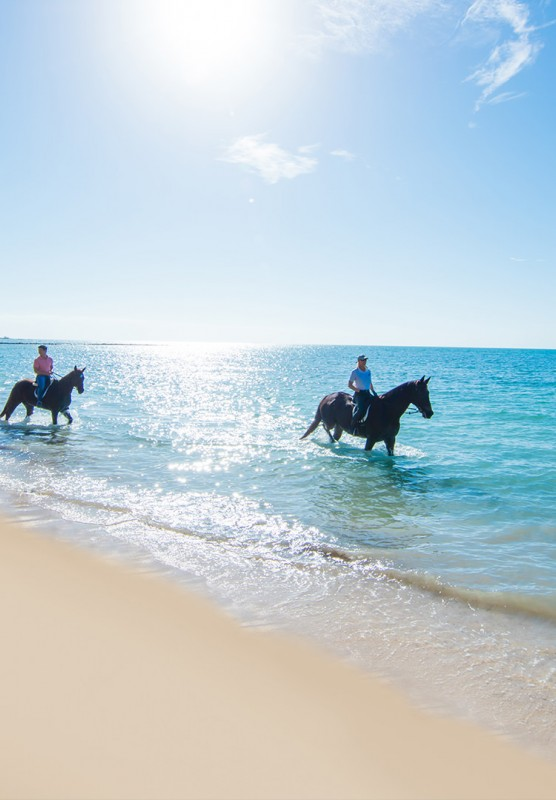 People horseback riding through tropical waters on a white sand beach.