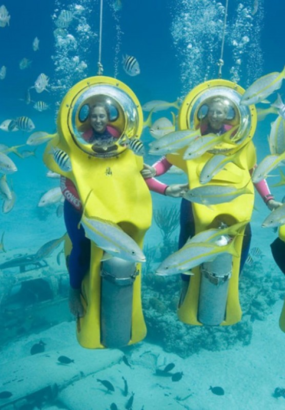 People underwater in scuba suits